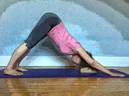 downward facing dog with support  yogarsutra