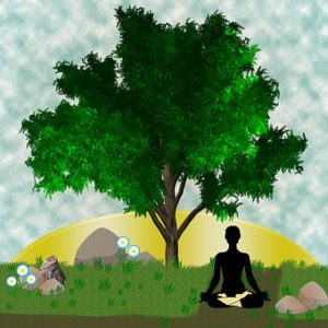Mindfulness Meditation and Digestive System