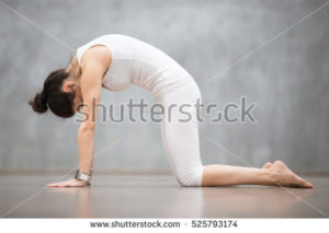 Yoga and skeletal system