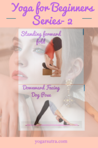 Standing forward bend and downward facing dog yoga pose