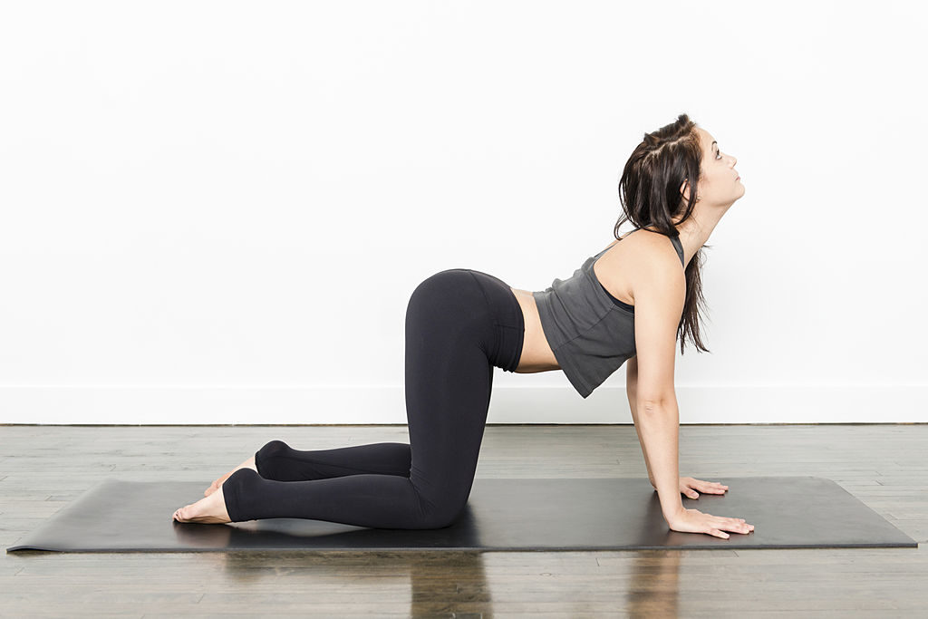 Yoga for beginners series-3. The Cow Pose.