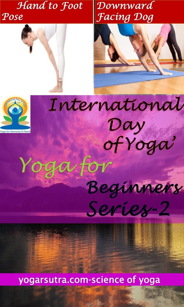On International yoga day learn yoga in just two steps. In yoga for beginners series-2, learn next two yoga postures #ForwardFold and #DownwardfacingDog Pose