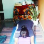 Child's Pose on yoga Blocks