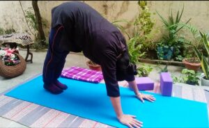Downward facing dog posture with yoga Bandhas