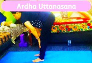 Uttanasana and Ardh uttanasana yoga postures